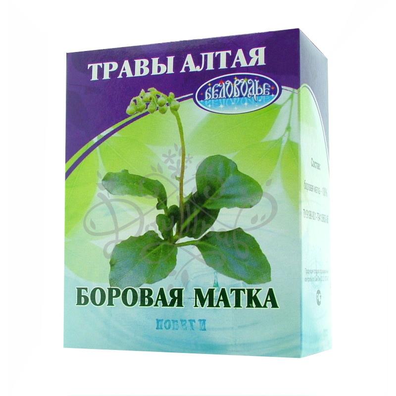 sbor-borovaya-matka